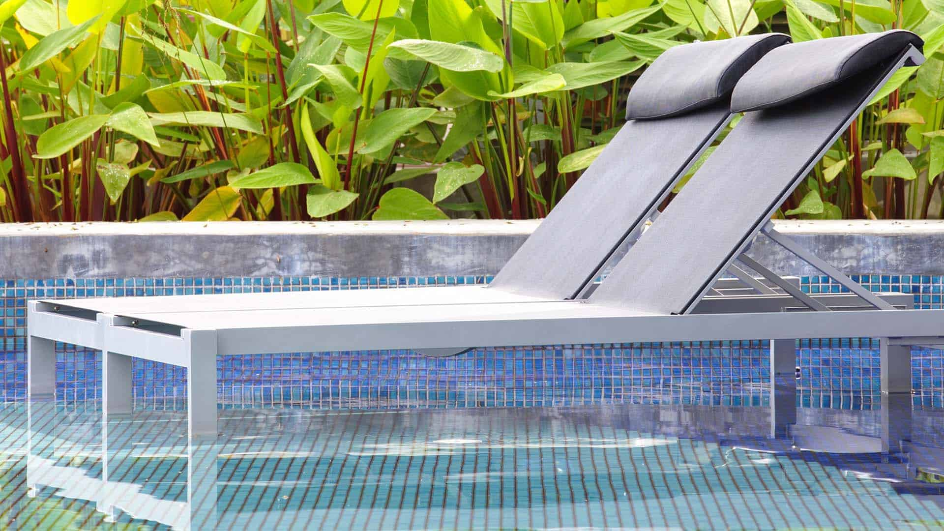Chaise lounge chair inside of shallow pool in front of green plants